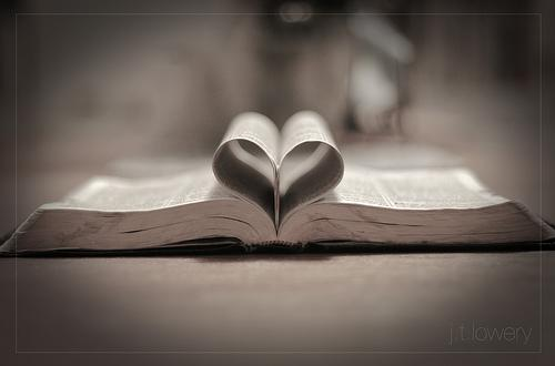 OBRÁZEK : kniha-a-srdiecko.jpg